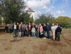 «Батьківщинівці» міста Южне організували висадку дерев у парку
